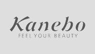 kanebo - klant van DAEMS pensioenstrategen